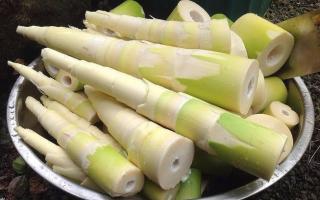 4 thực phẩm hại gan khủng khiếp nhưng người Việt vẫn 'mê mẩn'